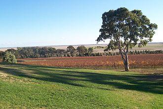 Limestone Coast - View across the plains near Naracoorte from Russet Ridge Winery
