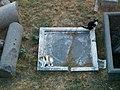 Vm-6670-Rome-Area-Sacra-2-cats.jpg