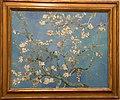 WLANL - ronkerkhoven - Amandelbloesem. Vincent van Gogh (1890).jpg