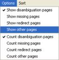 WPCleaner - Options Menu.png