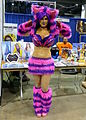 WW Chicago 2015 - Cheshire Cat (21038831852).jpg