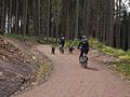 Walkers, cyclists and dogs on the Lakeside Way - geograph.org.uk - 1361714.jpg