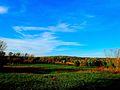 Warner Park during Autumn - panoramio (3).jpg