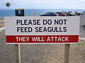 Warning Sign Phillip Island Victoria.JPG