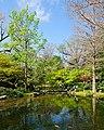 Water in The Garden (5551975644).jpg