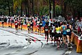 Web 2 MaratonaMASC AN2I1133-c-2016HeusiAction Motta.jpg