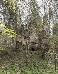 Weitensfeld Wullross Burgruine Nord-Ansicht 17042016 1494.jpg