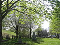 Wenham Cemetery in the Spring.jpg
