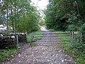 West Loch Lomond Cycle Path - geograph.org.uk - 261614.jpg