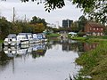 Wey Navigation, Stoke - geograph.org.uk - 599434.jpg