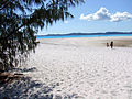 Whiteheaven Beach.jpg