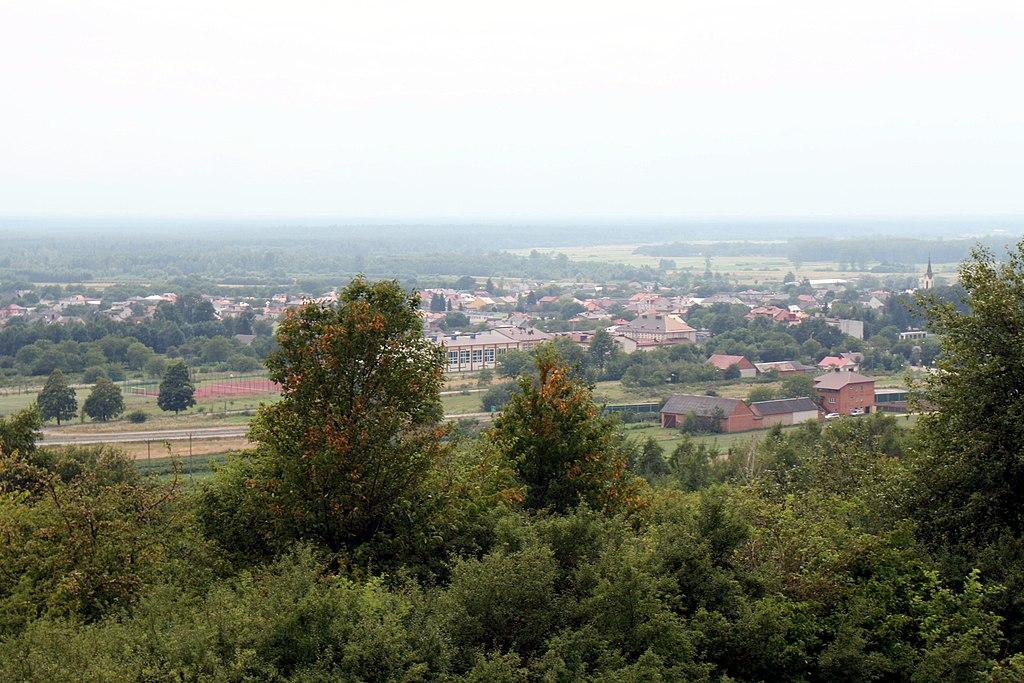 Widok z wieży widokowej na Frampol.jpg