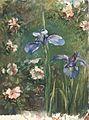 Wild Roses and Irises MET ap50.113.3.jpg