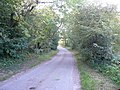 Wildaygreen Lane - geograph.org.uk - 558412.jpg