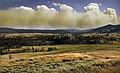 Wildfire in Yellowstone National Park produces Pyrocumulus clouds1.jpg