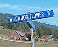 Wildwood Flower Drive at the Carter Fold at Maces Springs, Virginia now Hiltons, Virginia (cropped).jpg