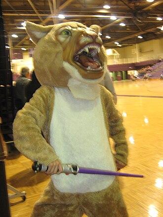 Hammond High School (Indiana) - Willy the Wildcat