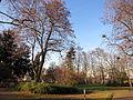 Wolfskel'scher Park (2).JPG