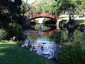 Wollongong Botanic Garden - Wollongong Botanic Gardens
