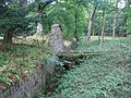 Woodland, Gosford - geograph.org.uk - 59920.jpg