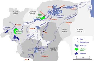 Hadejia-Nguru wetlands