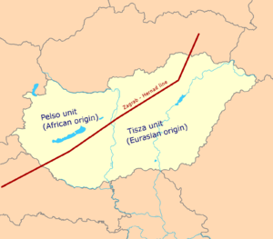Pelso Plate - Pelso and Tisza units, the Zágráb-Hornád line is the former plate margin between them