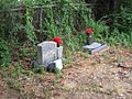 Zion CME Church Cemetery Raines Rd Memphis TN 005.jpg