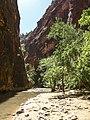 Zion Canyon 93.jpg