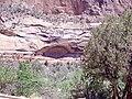 Zion National Park, UT (6986688600).jpg