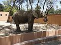 Zoobotánico Jerez (25).JPG