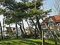 """""""Clemenceau"""", villa in cottagestijl, Schotspad 8, 't Zoute (Knokke-Heist).JPG"""