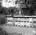 """""""Tasa"""" čebelnih panjev (začasno), Vipava 1958 (2).jpg"""