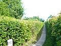 (Querweg Ringallee) Weißensee 110609 AMA fec (32).JPG