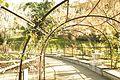 ® S.D.I. MADRID PARQUE DEL OESTE - ROSALEDA - ANILLO - panoramio (2).jpg