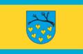 Łaziska Górne flag.png