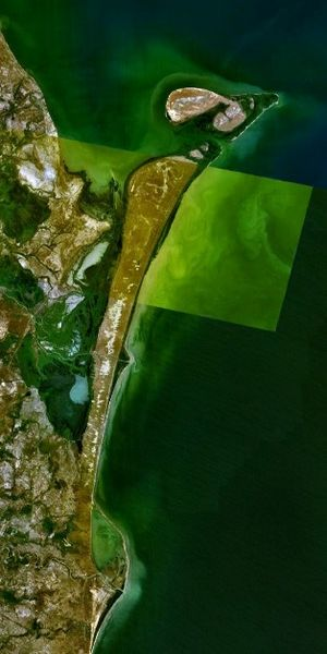 Chechen' Island - Aerial picture of the Agrakhan Peninsula with Chechen Island off its northern tip.
