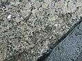 Ансамбль Биржи (Санкт-Петербург и Лен.область, Санкт-Петербург, Биржевая площадь)DSCN9273.JPG