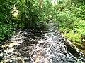 Аурайоки (река, впадает в Ладожское озеро) 1.jpg