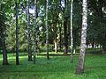 Без названия - panoramio (354).jpg