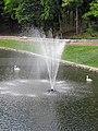 Гомель. Парк. У Лебяжьего озера. Фото 18.jpg