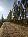 Дорога на с. Буйволівці, фото 6.jpg