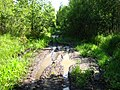 Летом 2010 года дорога просохла до проходимого состояния - panoramio (1).jpg