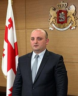 Mindia Janelidze Georgian politician