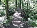 Мостик в Архиерейской роще.jpg