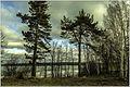 Озеро Сунгуль. - panoramio.jpg