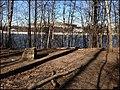 Парк на Воробьевых горах - panoramio (2).jpg