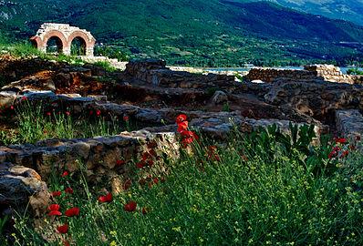 Плаошник - Охрид.jpg
