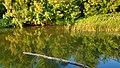 Река Салмыш - panoramio.jpg
