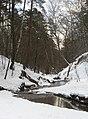 Река Чертановка (Битцевский лес) зимой 2008 года.jpg