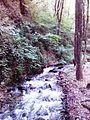 Смоларски водопад 2.jpg